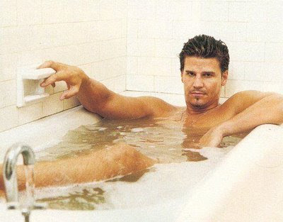 david-boreanaz-tub1[1]