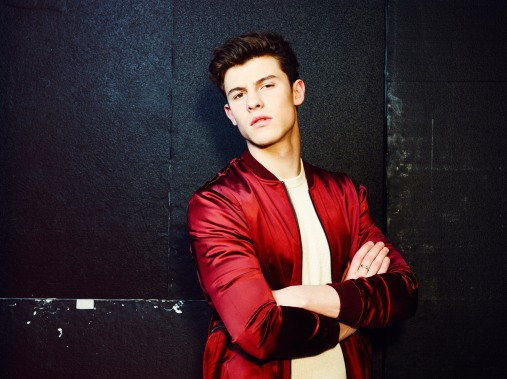 notion_shawn_mendes_468-3059706217